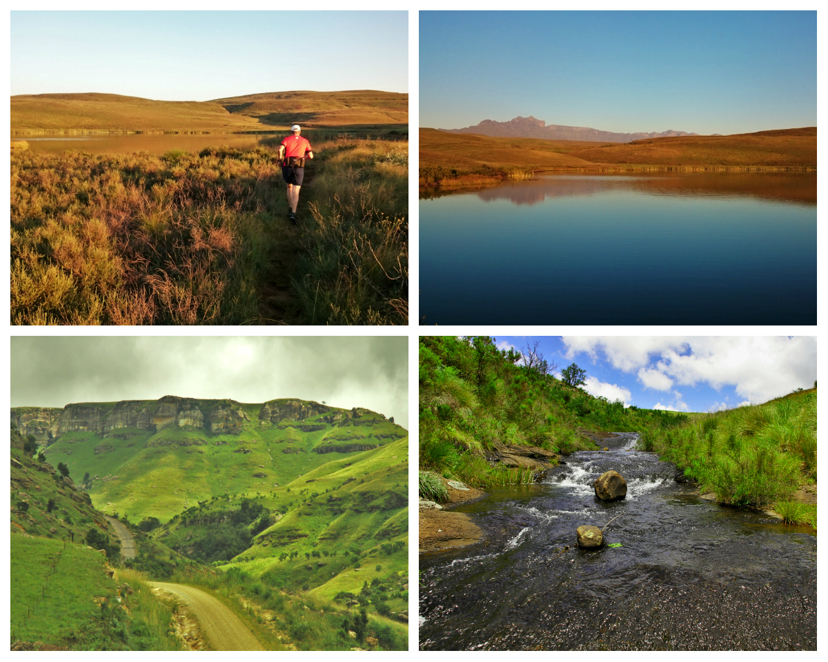 highmoor collage