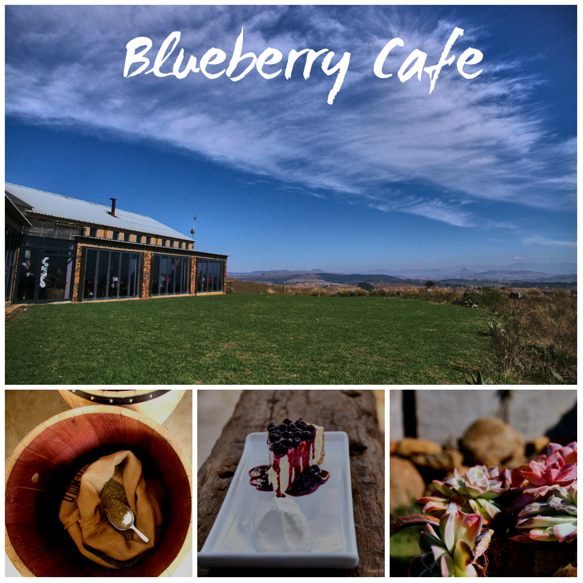 blueberry cafe restaurant midlands meander