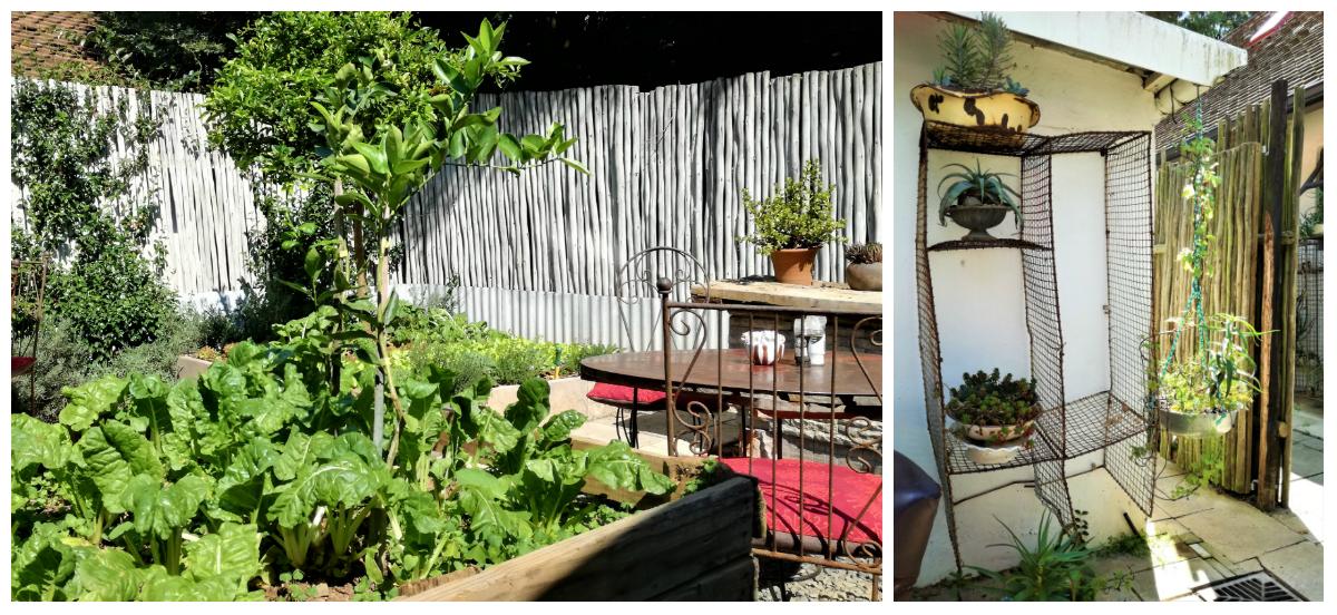 Cafe Bloom Gardens